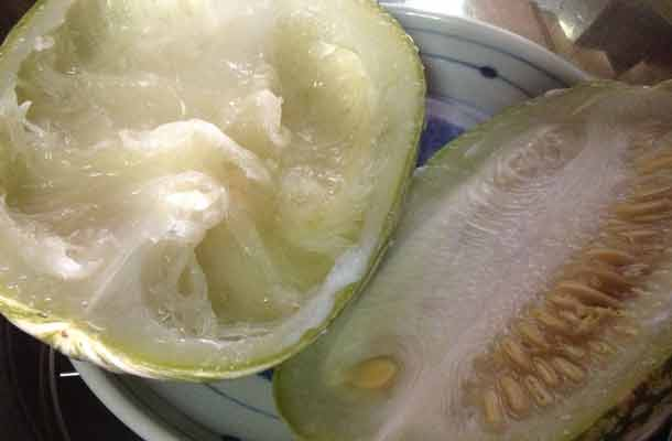 Sharkfins-Melon-Soup-Recipe1