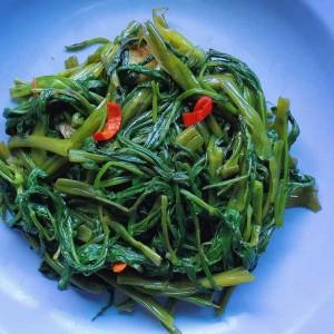 stir fry kang kong recipe
